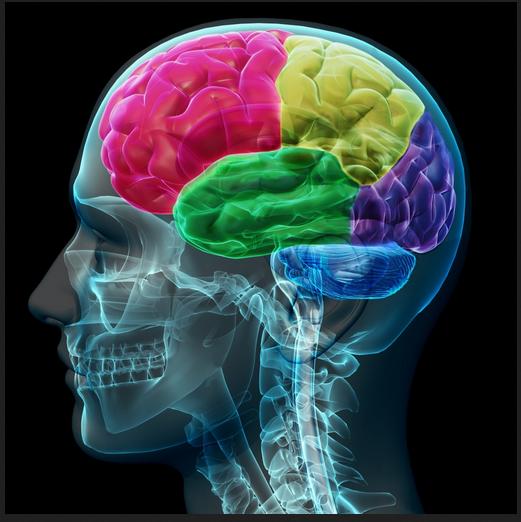 brain colorado shooting color optical war