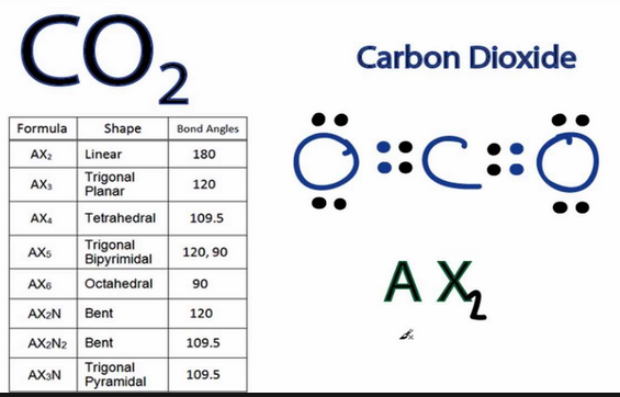 Carbon dating formula wikipedia dictionary